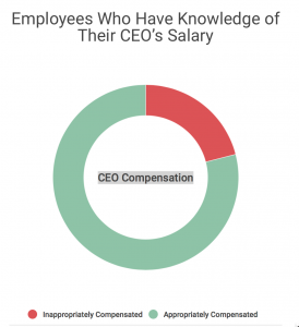 CEO Pay Ratio - Fair Among Those in the Know
