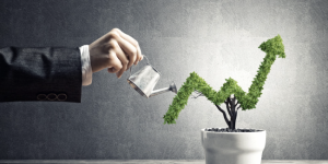 Millennials Seek to Support Sustainability through 401k Plans