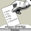 Amazon 2018 Rigs Election