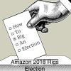 Amazon 2018 Rigs Election