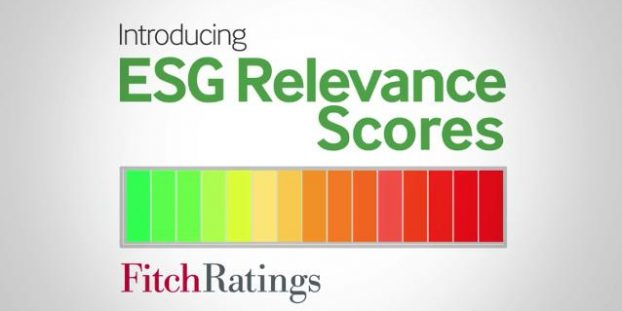 Fitch ESG Relevance Scores