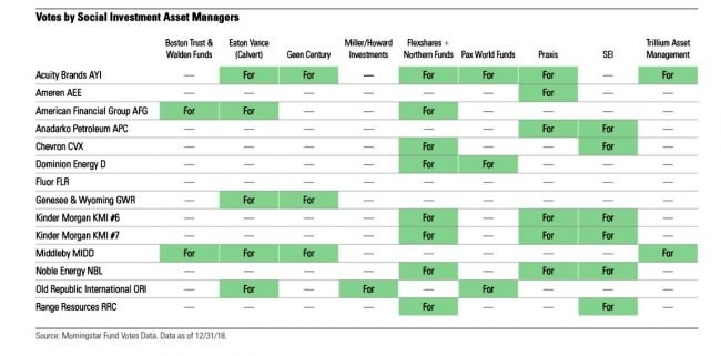 Votes by SRI asset managers