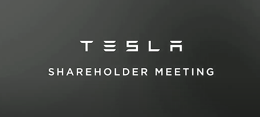 Tesla 2020 Shareholder-Meeting
